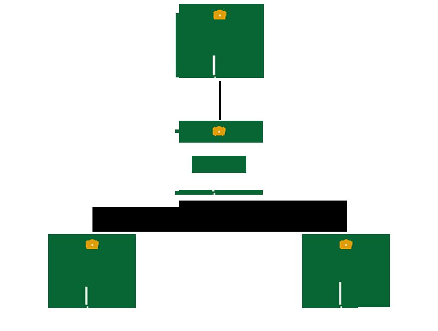 organigramme-fdlr